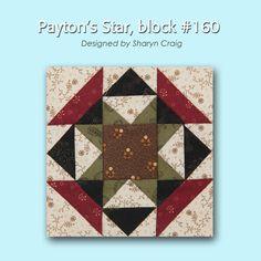 100 Blocks Sampler Sew Along Block 9: Payton's Star designed by Sharyn Craig #100BlocksSampler