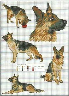 Pixel duitse herder