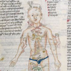 Zodiac Man medical miscellany ('Wellcome Apocalypse'), Germany 1420 London, Wellcome Library, MS.49, fol. 43v