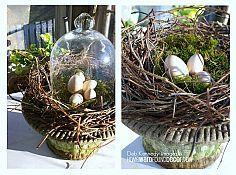 Hometalk :: Garden Decor Ideas :: Sensible Gardening and Living's clipboard on Hometalk