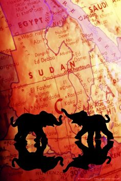 Elephant silhouettes in front of a map
