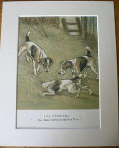 1947 los perros FOX TERRIER Vintage firmado Vernon por Hollysprints