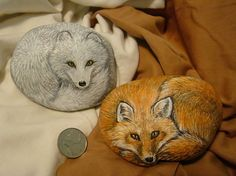 """Galets peints """" red fox- arctic fox"""" by Cynthia Snider Painted Rock Animals, Hand Painted Rocks, Painted Pebbles, Painted Stones, Pebble Painting, Stone Painting, Rock Painting, Stone Crafts, Rock Crafts"""