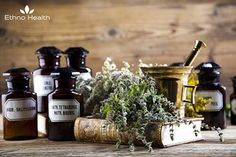 4 Natural First-Aid Remedies - Health and Wellness - Mother Earth Living Health And Nutrition, Health And Wellness, Thistle Seed, Allotment Gardening, Herbal Medicine, Medicine Garden, Medicine Bottles, Medicinal Herbs, Health And Beauty Tips
