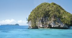 Plan Your Next Trip to Koh Tao | Scuba Diving      http://www.crystaldive.com/about.html