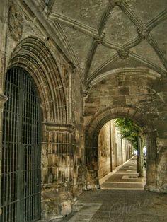 En Briviesca(Burgos-españa).