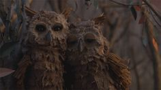 "How can you not LOVE owls?    ""Small Hands"" by Keaton Henson    Director: Joseph Mann  Executive Producer: Bart Yates  Produced by: Joseph Mann, Tamsin Glasson, James Bretton  Written by: Joseph Mann  Director of Photography: Matthew Day"