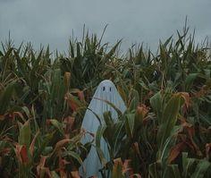 The Loving Dread — starrywisdomsect: A selection of illustrations. halloween art jack o' lantern The Loving Dread: Photo Autumn Aesthetic, Aesthetic Grunge, Aesthetic Photo, Aesthetic Art, Aesthetic Pictures, Images Esthétiques, Photo Instagram, Autumn Instagram, Vaporwave