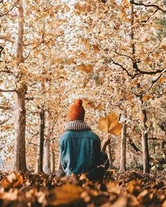 15 Fall Photoshoot Ideas To Get Some Serious Inspo 15 Fall Ph. - 15 Fall Photoshoot Ideas To Get Some Serious Inspo 15 Fall Photoshoot Ideas To G - Yellow Photography, Autumn Photography, Family Photography, Photography Poses, Travel Photography, Winter Date, Fall Inspiration, Amstaff Puppy, Urban Outfitters