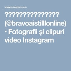 👑🅱🆁🅰🆅🅾👑🅰🅸👑🆂🆃🅸🅻👑 (@bravoaistilllonline) • Fotografii şi clipuri video Instagram
