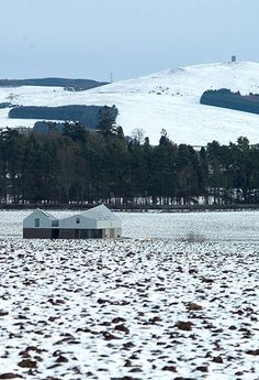 """Drummond House, """"The Shed"""", Meigle. Landformed architecture."""
