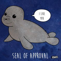 Some days we just need an adorable sea mammal to reassure us that everything will be okay! #PunTuesday #Puns