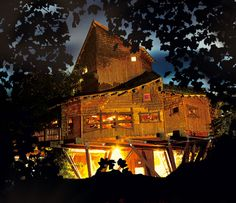 Treehouse Restaurant - Alnwick Garden (UK)
