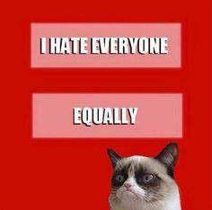 Grumpy HRC marriage equality gay love