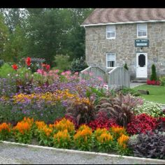 Flower bed with high impact colors from perennials and annuals. Love the fountain grass in the center! Spread out to make a walkway border. Flower Bed Designs, Flower Garden Design, Flowers Garden, Farm Gardens, Outdoor Gardens, Landscape Curbing, Fountain Grass, Low Maintenance Landscaping, Annual Flowers