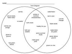How To Brainstorm For Your Next Essay With A Venn Diagram  Venn