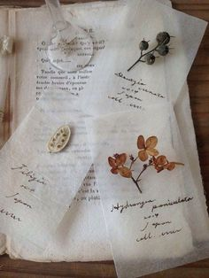 Tea Bag Art, Diy And Crafts, Paper Crafts, Pressed Flower Art, Deco Floral, Witch Aesthetic, Nature Journal, Nature Crafts, Craft Ideas