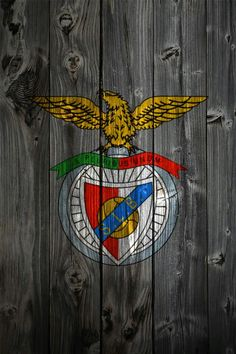 Benfica champions 2014