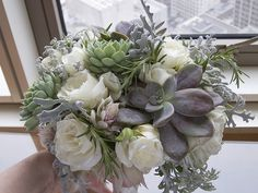 "succulent  champagne bouquet | Close up of ""Blushing Bride"" - a soft pink protea with papery exterior ..."