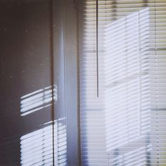 I used to hate these cheap plastic blinds, but now I see that  most things, no matter how mediocre, can become beautiful when placed in the right light.