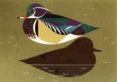 Illustration by Charley Harper