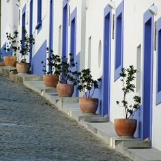 Blue & White Houses in Odeceixe, Alentejo, Portugal ~ Photo by . Visit Portugal, Spain And Portugal, Portugal Travel, Algarve, Santiago Do Cacem, Cultural Architecture, The Beautiful Country, Foto Art, Tours