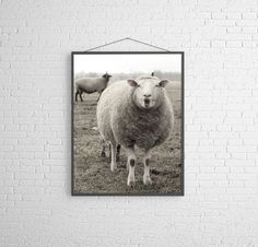New Spring ewe and young lambs. This image is 11x14 I would typically print this on semi matte, lustre archival paper. If you would like