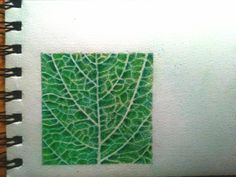 Plant Leaves, Herbs, Plants, Herb, Flora, Plant, Planting