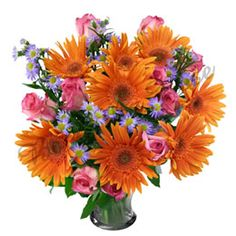 8 Orange Gerbera & 8 Pink Roses In Normal Vase #OrangeGerbera #PinkRoses