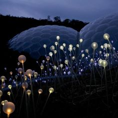 Lighting designer Bruce Munro's 'Field of Light' installation at the Eden Project in Cornwall, England.