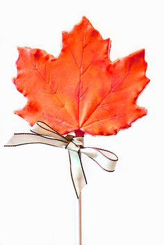 DIY Chocolate Maple Leaf Lollipop Favors