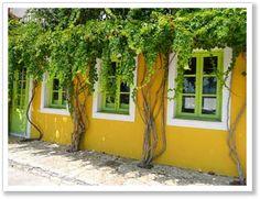 Fiskardo... Zorba The Greek, Greece Holiday, Yellow Houses, Greece Islands, Corfu, Rear Window, My Favorite Color, Sailing, Scenery