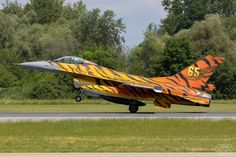 F-16AM FA-77 Belgian Air Force NATO Tiger Meet 2016 Able Archer 83, Airplane War, F 16 Falcon, Pilot License, Turbine Engine, Flying Vehicles, Tiger Painting, Aircraft Painting, Tiger Tiger