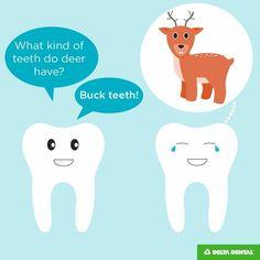 Oh deer…. Is our dental humor punny? We hope so! If you love dental jokes as m… Cheesy Jokes, Corny Jokes, Funny Jokes For Kids, Dad Jokes, Toddler Jokes, Cas, Dentist Jokes, Dental Life, Emergency Dentist