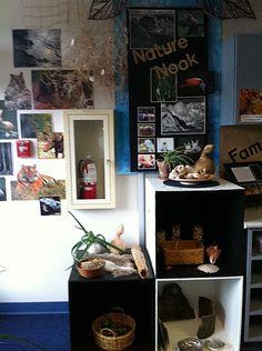 Primary Village, Centerville  natural displays