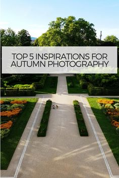 Every autumn, nature puts on a brilliant show of color in many parts of Europe. From bright yellows to vibrant reds, the leaves transform, showing their rich and vibrant hues. Every year, travelers flock to these areas to take in the fall foliage, to catch a glimpse of nature's splendor.  Here are my Top 5 photography Tips for colorful autumn photos #photography #photographytips #vienna