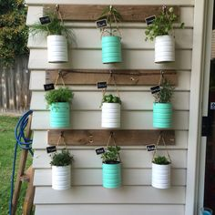 Formula Tins reused for our herb vertical garden. Reused a wooden pallet and knocked off a few palings. Hanging Herb Gardens, Vertical Herb Gardens, Hanging Herbs, Outdoor Gardens, Formula Can Crafts, Baby Formula Cans, Pot Jardin, Tin Can Crafts, Herbs Indoors