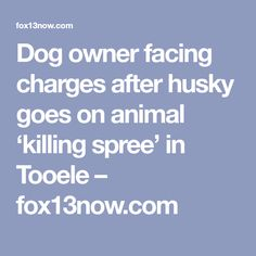 Dog owner facing charges after husky goes on animal 'killing spree' in Tooele Dog Attack, Dog Owners, Husky, Pitbulls, To Go, Animals, Animales, Pit Bulls, Animaux
