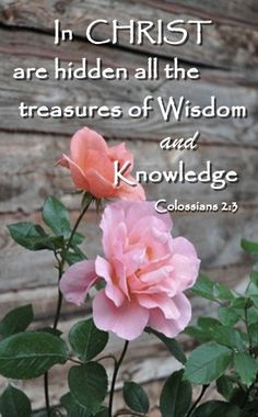 COLOSSIANS 2:3 - true treasure - wisdom and knowledge - kindness, compassion, virtue - build your house on a rock