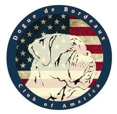 Join the Dogue de Bordeaux Club of America   www.DDBCA.net