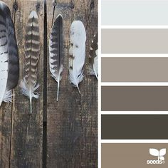 today's inspiration image for { rustic tones } is by @julie_audet ... thank you, Julie, for another incredible #SeedsColor image share!