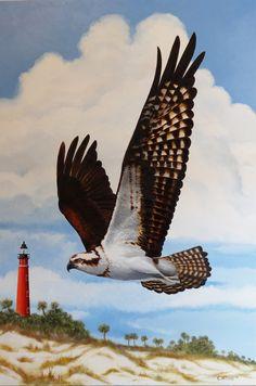 Osprey, Oil on canvas