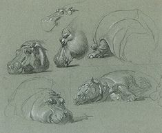 Things of beauty I like to see, Animal sketches by Raymond Sheppard(1913 - 1958)