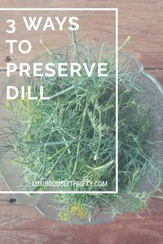 3 ways to preserve dill for delicious, fresh-tasting dill all year Dill Recipes, Herb Recipes, Canning Recipes, Dinner Recipes, Drying Herbs, Preserve Fresh Herbs, Dill Potatoes, Garlic Spread, Gardens
