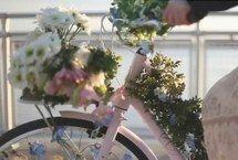 красиво, велосипед, цветок, любовь, розовый