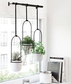 Fintorp Ikea, Window Plants, Indoor Window Planter, Hanging Pots, Indoor Hanging Plants, Potted Plants, Indoor Plant Decor, Indoor Plant Shelves, Diy Hanging Planter