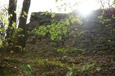 Ruiny Zamku Nowy Dwór