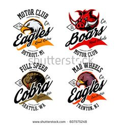 Vintage American furious eagle, boar and cobra bikers club tee print vector design set. Street wear t-shirt emblem. Premium quality wild animal, snake and bird superior logo concept illustration.