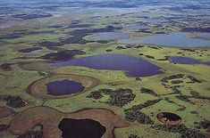 Mi Argentina, mi Provincia. Una amplia vista de los Esteros del Iberá - Autor: Casa de la Provincia de Corrientes