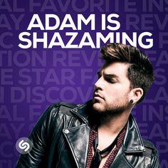 "Shazam Entertainment on Instagram: ""#Glamberts! @adamlambert is in #Shazam! Follow him now and see what he's Shazaming."""